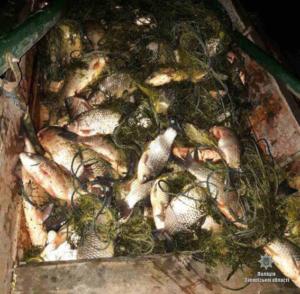 В Запорожье правоохранители изъяли у браконьеров полтонны рыбы - ФОТО