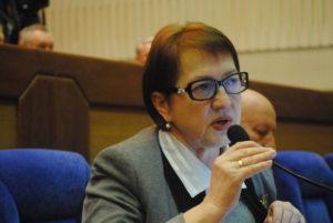 Депутат областного совета Татьяна Ковылина задекларировала экскаватор