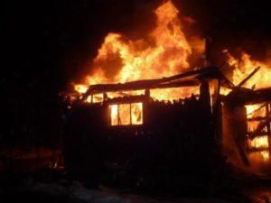 В Запорожской области произошло возгорание во дворе частного дома