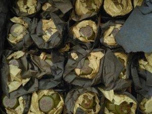 В Запорожской области обнаружили тайник с 10 тысячами патронов и 40 гранатами - ФОТО, ВИДЕО