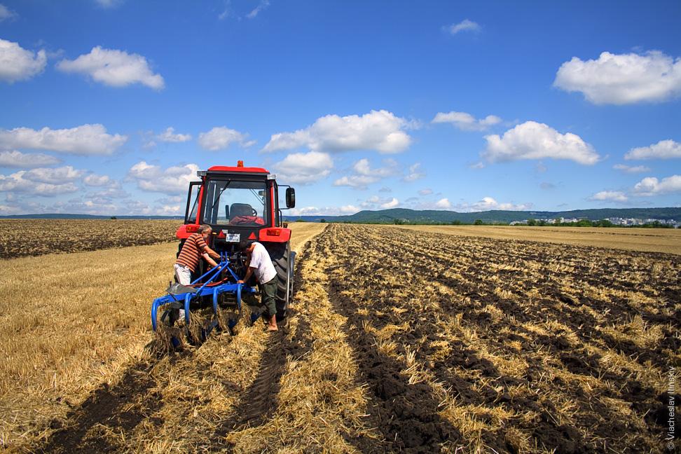 В Запорожской области фермеров, которые получили землю в пожизненное пользование, лишают своих прав