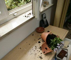 В дом через окно: запорожанка ограбила местного жителя
