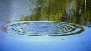 В Запорожской области рядом с гостиницей в пруду утонул мужчина