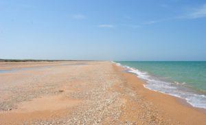 Прокуратура требует вернуть земельные участки на Азовском побережье стоимостью полмиллиона гривен