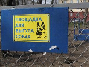 В Запорожье предлагают построить закрытые площадки для выгула собак