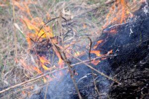 За выходные спасатели ликвидировали 31 пожар в экосистемах Запорожской области