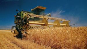 Запорожские аграрии начали собирать урожай 2017 года