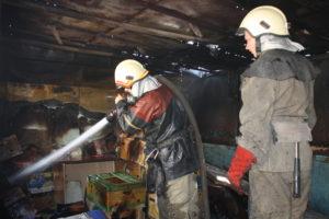 В Запорожье горела заброшенная постройка с мусором - ФОТО