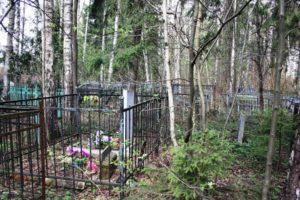 В Запорожской области поймали вандала, орудовавшего на кладбище - ФОТО