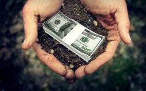 Деньги за землю: запорожский чиновник попался на взятке в 240 тысяч гривен - ФОТО