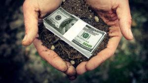 У Запорізькій області подмораторні землі продаються по 30 тисяч гривень за гектар