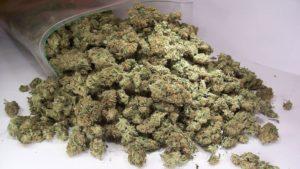У жителя Запорожской области нашли 17 спичечных коробков с марихуаной - ФОТО