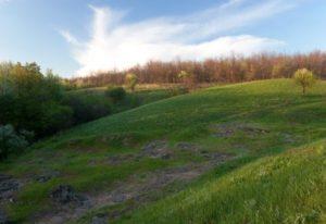 В Запорожской области чиновники незаконно передали в пользование землю с археологическими памятками стоимостью более 40 миллионов гривен