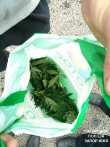 В Запорожье поймали 16-летнего подростка с пакетом конопли - ФОТО