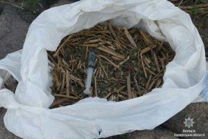 У двух жителей Запорожской области нашли наркотики и оружие - ФОТО