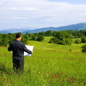 В областном Госгеокадастре выставят на продажу 800 гектаров земли в Запорожском регионе