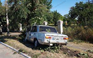 В Запорожской области пьяный водитель врезался в дерево - ФОТО, ВИДЕО