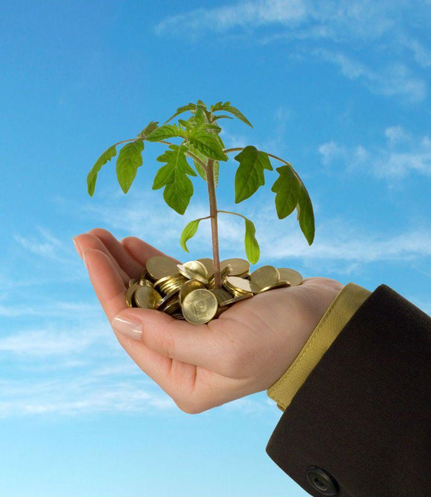 Запорожские аграрии заплатили 86 миллионов гривен налогов