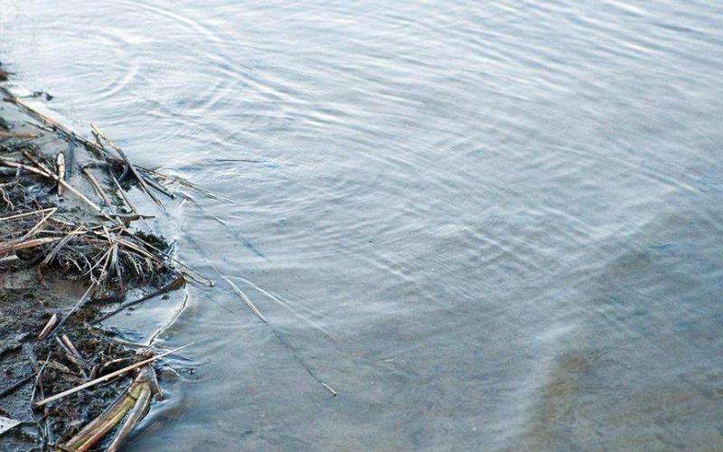 В Запорожской области в лимане обнаружили тело человека