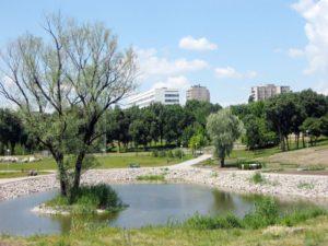 В Запорожье началось строительство нового парка