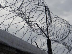 В Запорожской области из колонии сбежал заключенный