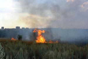 В Запорожье произошел масштабный пожар - ФОТО