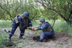 В Запорожской области пиротехники обезвредили 6 взрывоопасных предметов времен ВОВ