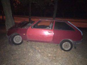 В Запорожье автомобиль врезался в дерево - ФОТО