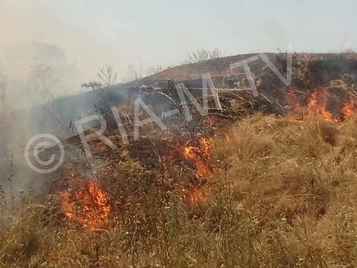 В Запорожской области пламя охватило