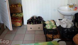 Ужасы торговли: на центральном рынке Запорожья продукты хранят в туалете - ФОТО