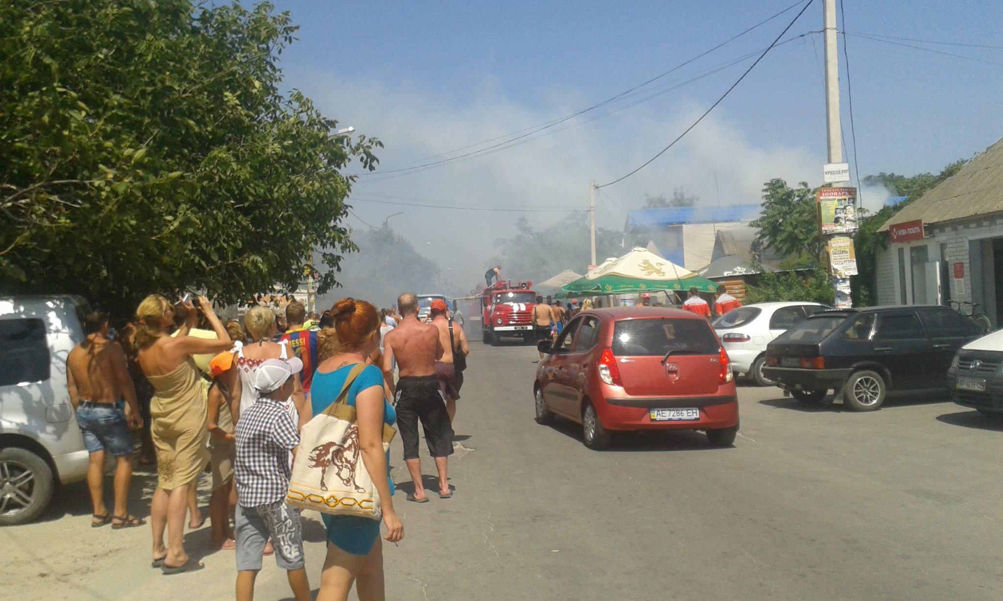Ликвидировать серьезный пожар влесничестве Запорожской области удалось квечеру