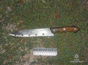 В Запорожской области мужчина в пылу ссоры ударил ножом соседа - ФОТО