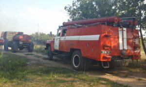 За сутки пожарные дважды тушили лесные пожары в Запорожской области - ФОТО