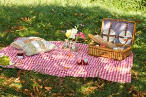 Запорожцев зовут в «Дубовку» на семейный пикник