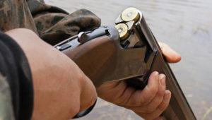 В Запорожской области живодер застрелил собаку из охотничьего ружья – ФОТО
