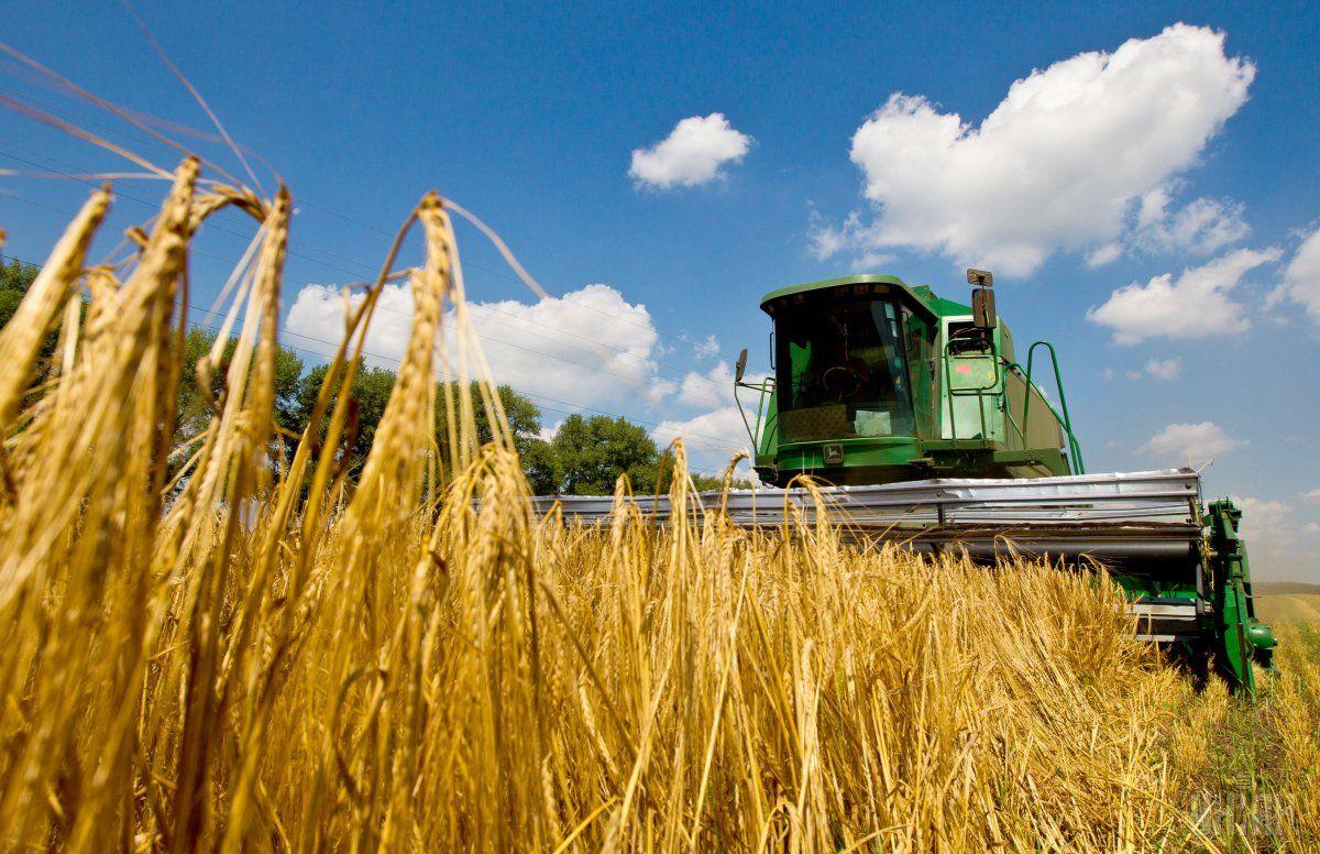 ВХохольском районе собрали рекордный урожай зерна