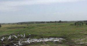 Запорожская военная прокуратура вернула Минобороне земельные участки площадью 330 га и стоимостью более 7 миллионов гривен