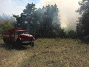 Пожары в Запорожской пылали на 17 гектарах открытой территории - ФОТО
