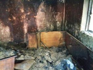 В Запорожье на острове Хортица во время пожара погиб мужчина – ФОТО