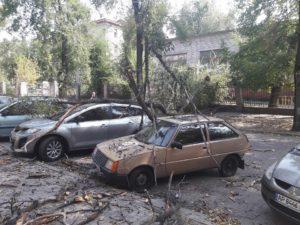 В центре Запорожья дерево упало на припаркованные авто - ФОТО