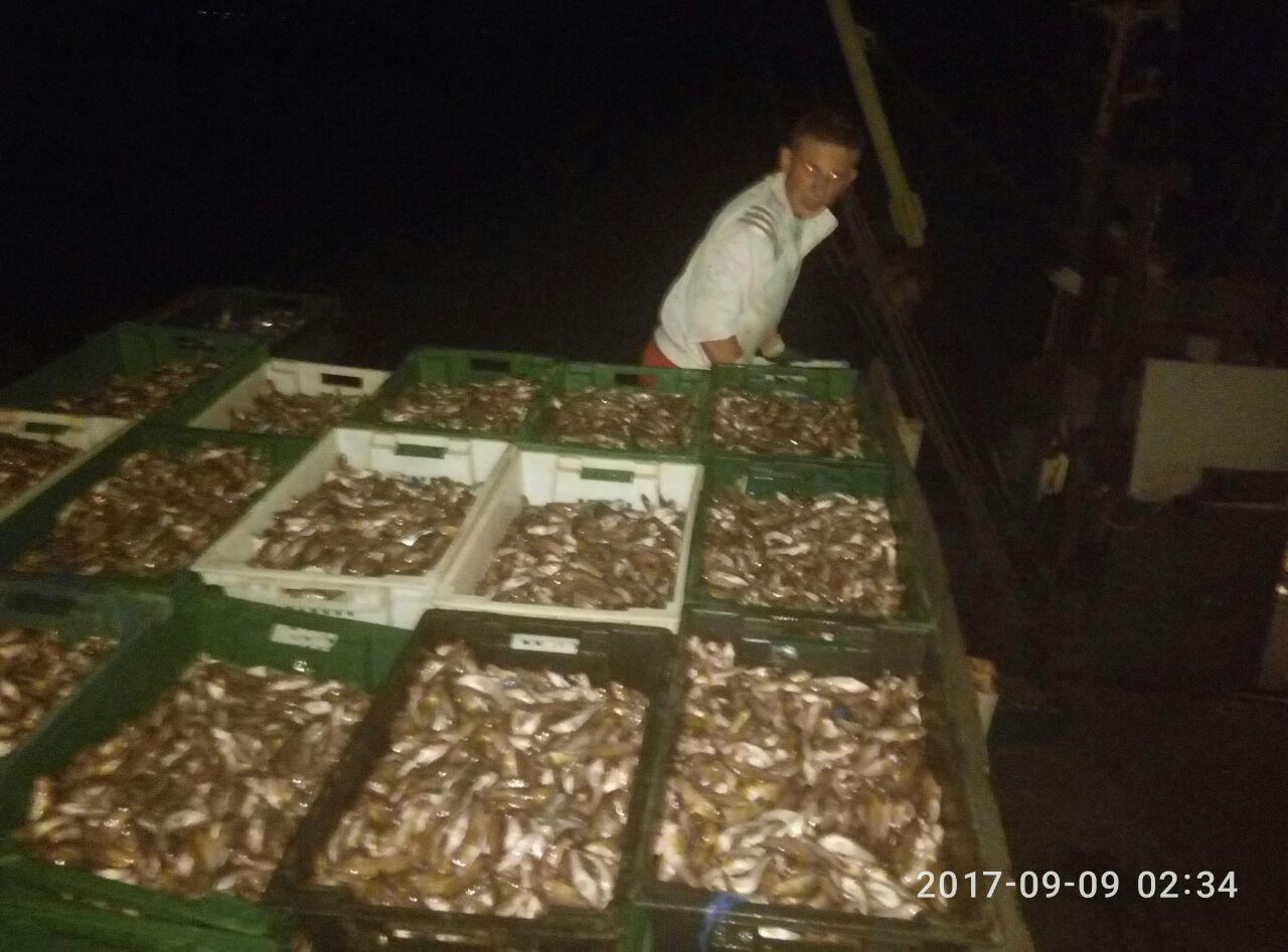 Рыбоохранный патруль и СБУшники задержали браконьера, который наловил бычков на 1,6 миллиона гривен