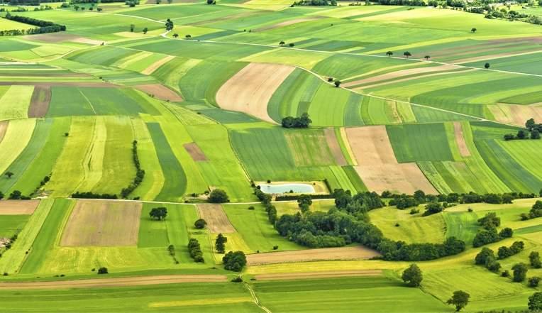 Житель Запорожской области самовольно занял участок земли площадью почти в 40 гектаров
