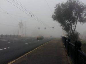 Осторожно, туман: запорожских водителей просят быть более внимательными на дороге