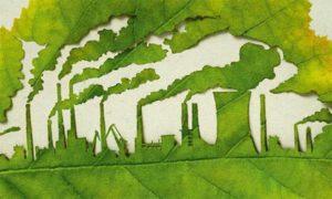 Запорожский крупный бизнес заплатил более 55 миллионов гривен «зеленого» налога
