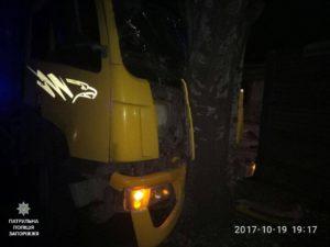 В Запорожье грузовик врезался в дерево - ФОТО