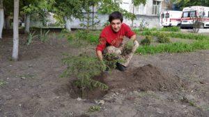 Запорожские велосипедисты озелененили военный госпиталь - ФОТО