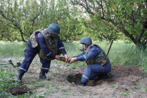 В Запорожской области обнаружили и обезвредили более десятка боеприпасов