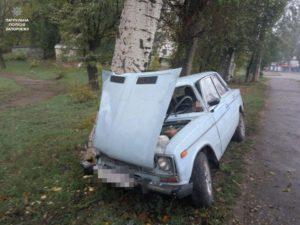 В Запорожье легковушка влетела в дерево: есть пострадавший - ФОТО
