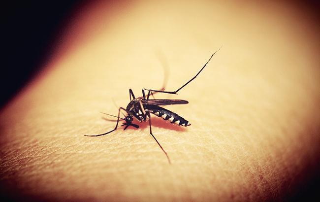 В Запорожской области зарегистрировали два случая малярии