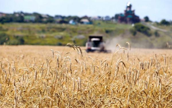 Финансовые показатели операции «Урожай» в 2017 году заметно снизились